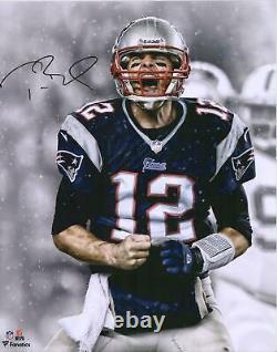 Tom Brady New England Patriots Autographié 16x20 Screaming Photograph Tristar